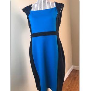 Sz Large Women's Dressy Dress Euc